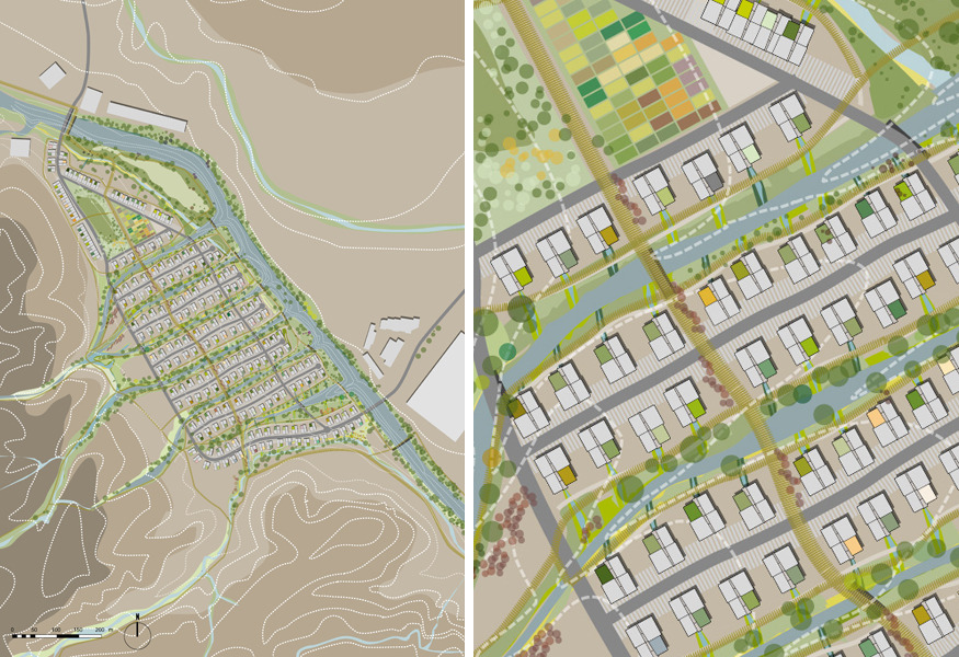drylands_neighborhood-rotated
